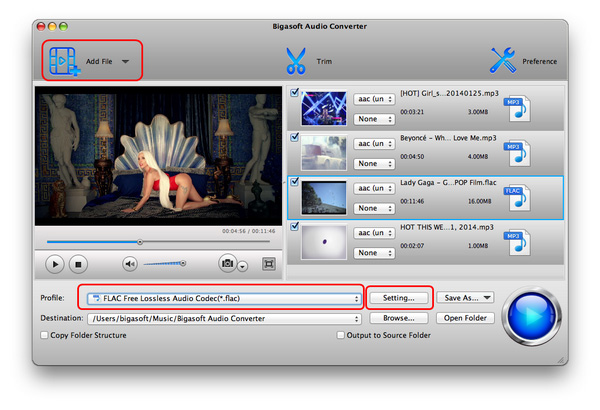 Hi-Res FLAC Converter - Easy to Play, Convert 24/96, 24/192 FLAC on