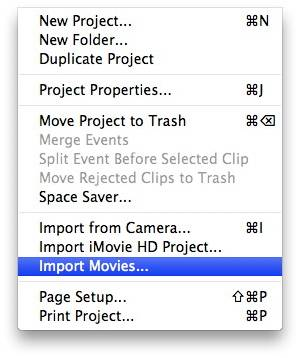 step by step guide on how to import Mini DVD into iMovie