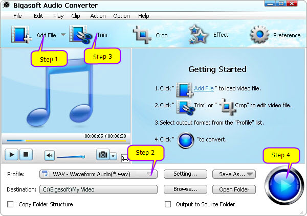 Easily Player FLAC in Windows Media Player