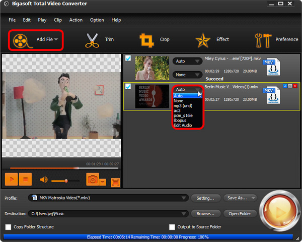 How to change audio codec? - Bigasoft