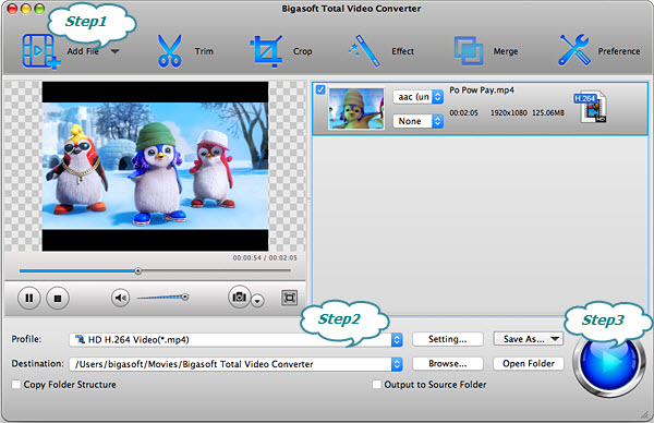 The best way to convert VP9 MKV to MP4 or AVI- Bigasoft