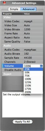 How to Adjust Audio Volume?