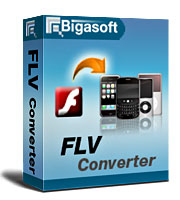 Bigasoft FLV Converter Software Box